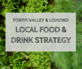 Stirling Food & Drink Strategy - plain greens.png